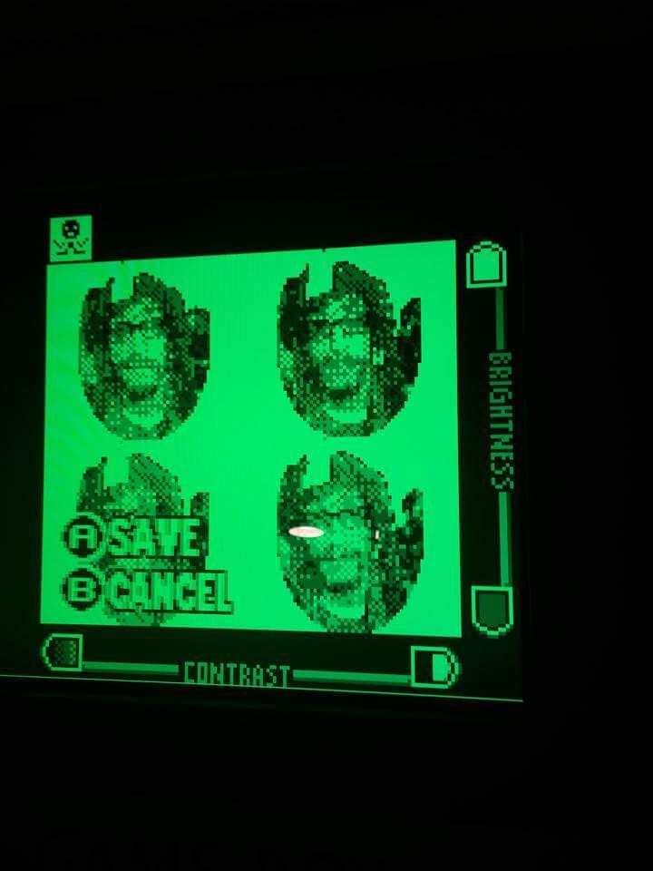 Gameboy Camera Selfie.